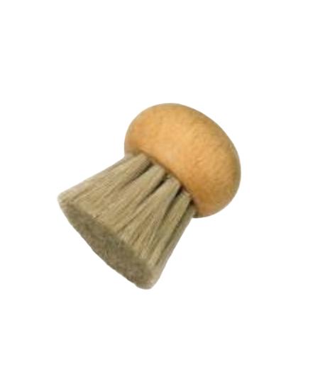 szczotka do mycia grzybów